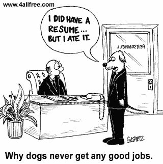 No good jobs for dogs